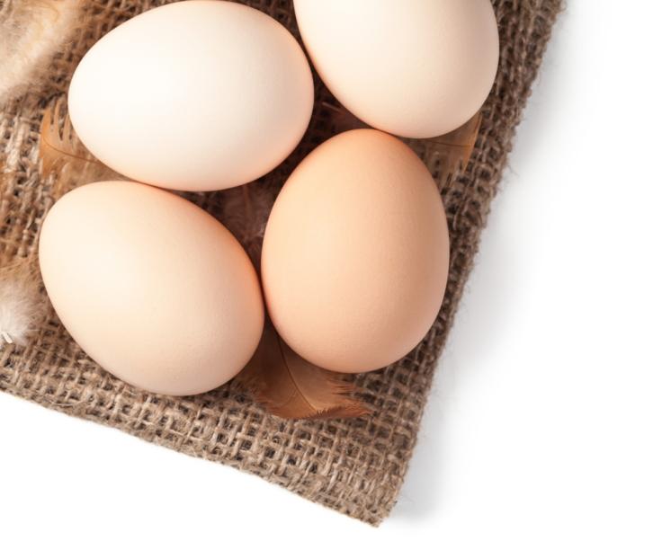 brun eggs gourmetdelight.in